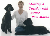 Monday & Tuesday with owner Pam Marah
