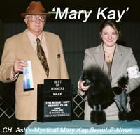 'Mary Kay'.....CH. Ash's-Mystical Mary Kay Beaut-E-News