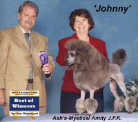 'Johnny' ....Can.CH.   Ash's-Mystical Amity J.F.K.