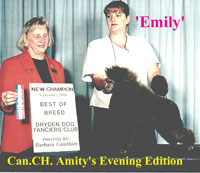 Emily. Can. CH. Amity's Evening Edition...now owned by JoAnn O'Neil