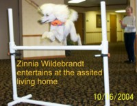 'Zinna Wildebrant' entertains at the assisted living home