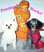 Penelope and Rocko