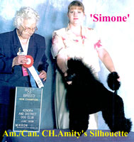 Simone. Am./Can. CH. Amity's Silhouette.