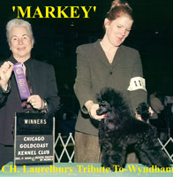 Markey. Laurelbury Tribute-To Wyndham. * owner Margaret Schneider