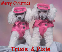 Merry Christmas. Trixie and Pixie