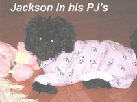 Jackson in his new PJ's