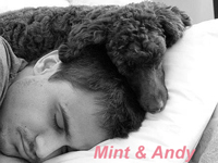 Mint & Andy enjoying a nap!