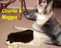 Charlie with her big sister Maggie