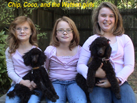 Chip, Coco, and the Watson's
