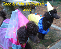 Coco & Chip halloween 2006