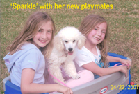Sparkle with her playmates