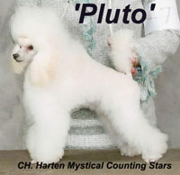 'Pluto' .. CH. Harten Mystical Counting Stars