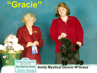 ***New American / Canadian Champion*** Amity Mystical Dancin W'Grace