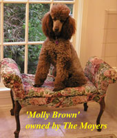 Molly Brown owned by The Moyers